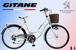 Vélo de Ville - Pro Cycle 45
